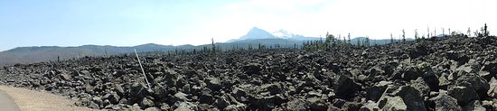 Blue River, OR: Lava Fields