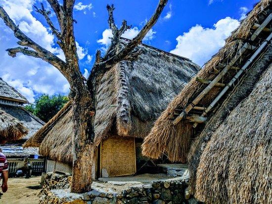 Sade, Indonesien: IMAG8674~2_large.jpg