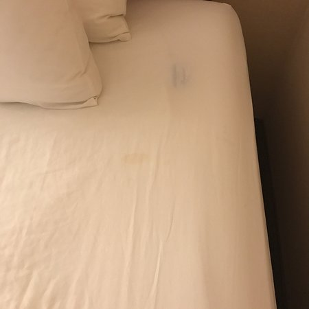photo0 jpg picture of radisson hotel salt lake city downtown salt rh tripadvisor com au