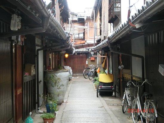 蜂蜜専門店 ドラート 京都西陣本店