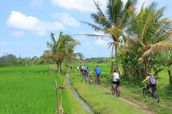 Bali Lost Adventure