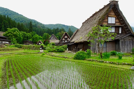 ‪The Historic Villages of Shirakawa-go Gassho Style Houses‬