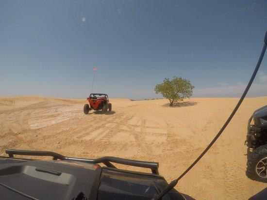 Waynoka, OK: Sandy dunes
