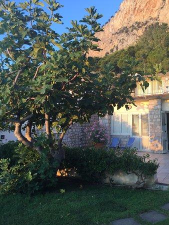 Imagen de B&B Villa Addaura
