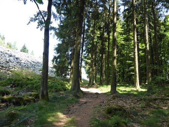 otzenhausen ringwall picture of ringwall von otzenhausen
