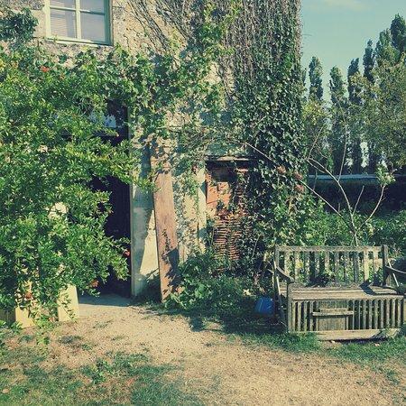 Mortagne-sur-Gironde照片