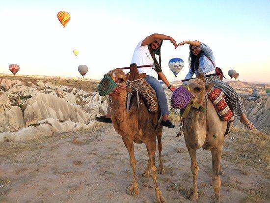 Savran Camel Safari