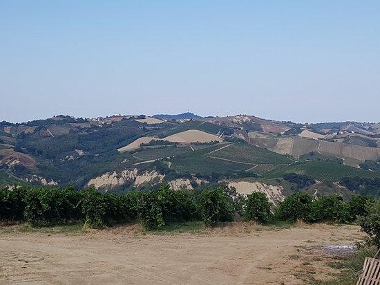 Societa Agricola San Filippo