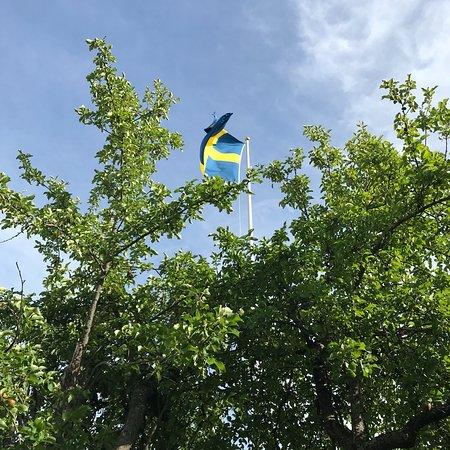Adelso, สวีเดน: photo0.jpg