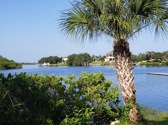 Parrish, Флорида: 20180808_085906_large.jpg