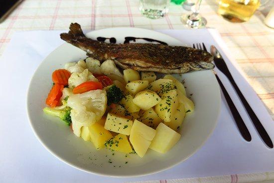 Dreznik Grad, Croacia: Abendessen