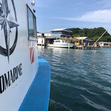 Gunter's Ecomarine: photo0.jpg