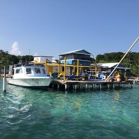 Gunter's Ecomarine: photo2.jpg