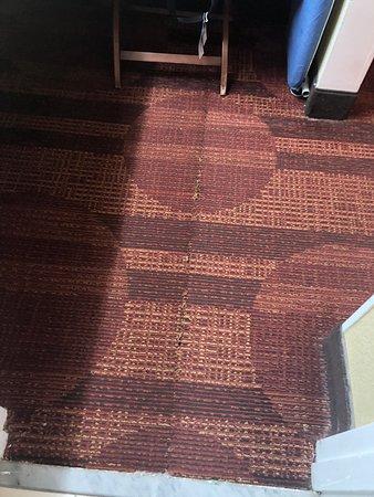 Foto de Quality Inn and Suites