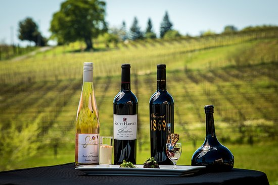 Plymouth, Californien: Scott Harvey Wines are all about food