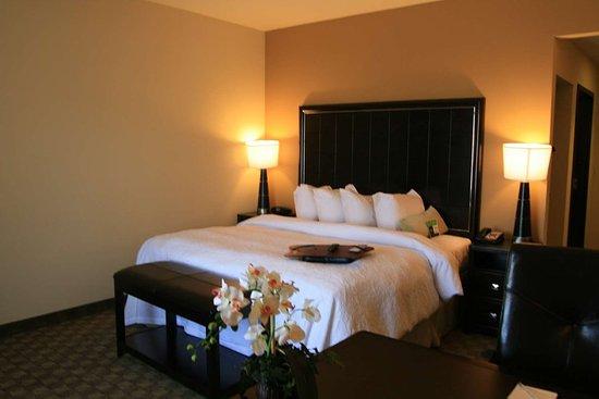 McAlester, OK: Guest room