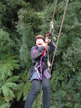 Rotorua Canopy Tours: You can tell I was scare!