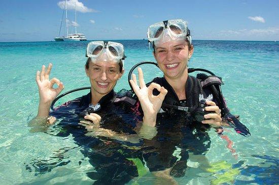 Ocean Spirit Michaelmas Cay Dive and...