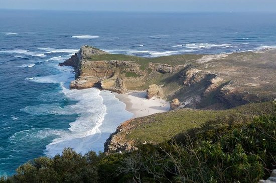 Full-Day Cape Peninsula Sightseeing...