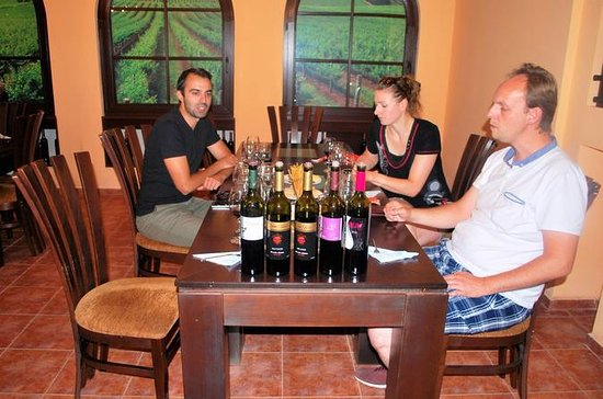 Full Day Wine Tour from Sofia