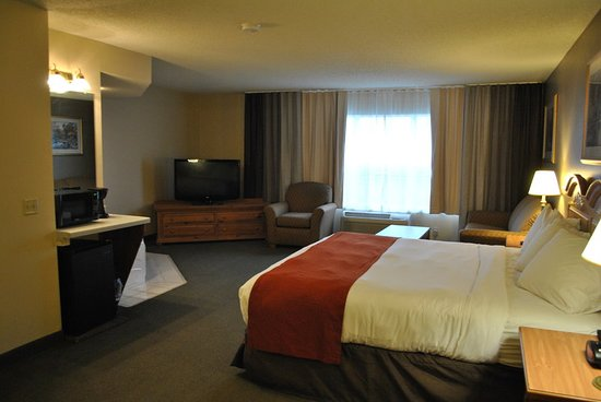 Country Inn Suites By Radisson Buffalo Mn