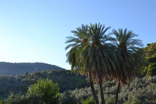 Palaia Epidavros照片