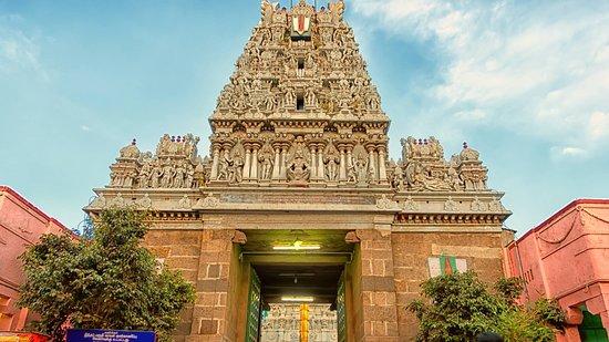 Sri Parthasarathy Temple