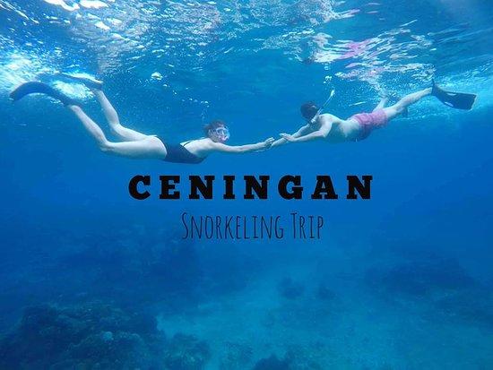 Ceningan Snorkeling Trip
