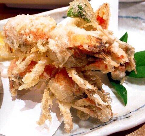 upoge biamajor tempura!! good with shochu and summer season is 'their best season' ! Glocal BAR
