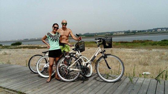 Biclaria - Urban Bikes Store