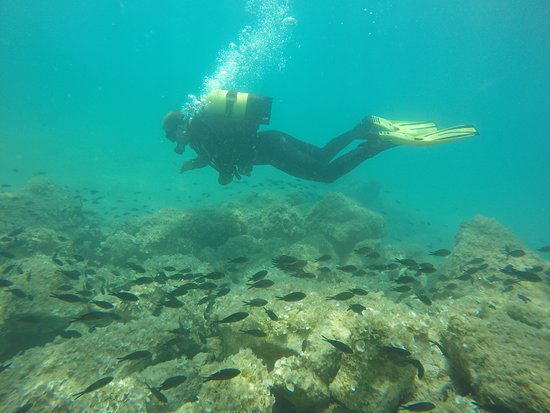 BLU Diving Center