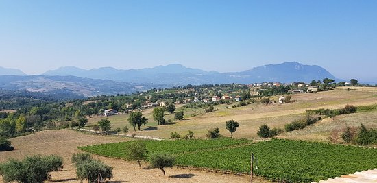 Gesualdo, Italy: 20180809_095338_large.jpg