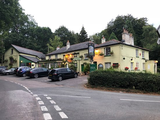 The New Forest Inn 이미지