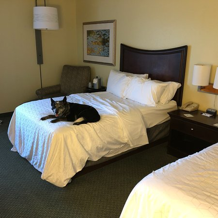 Holiday Inn Express Plainfield / Indianapolis: photo3.jpg