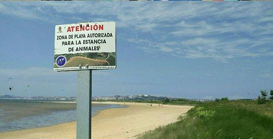 Playa de El Puntal: IMG_20180809_173909_large.jpg