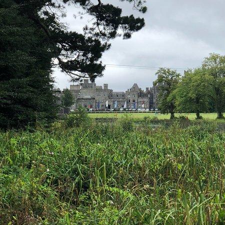 Connemara National Park & Visitor Centre: photo2.jpg