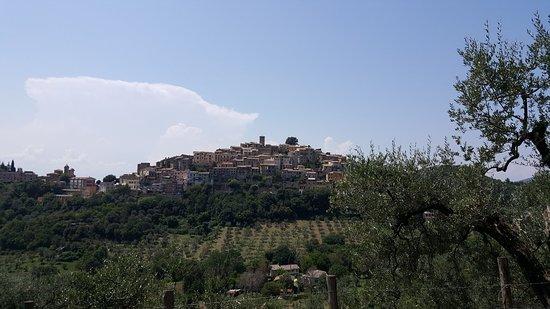 Casperia, Italia: 20180809_140529_large.jpg