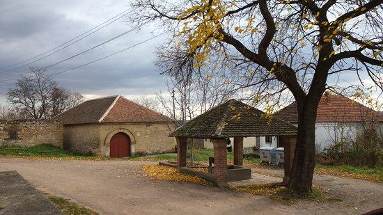 Negotin, Sérvia: Rogljevacke pivnice