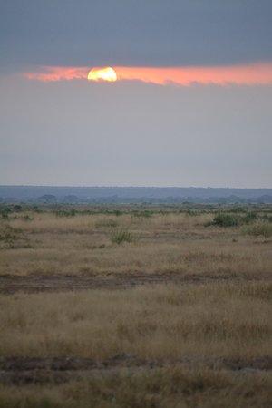Amboseli National Park, Kenya: Sunrise