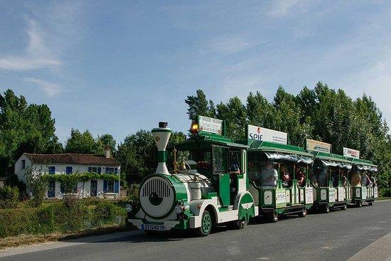 Le Petit Train du Marais Poitevin