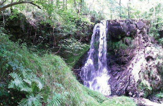 Saint-Nectaire, Francia: Une jolie cascade moins connue, pas de longue marche pour la découvrir, mais moins facile a trou