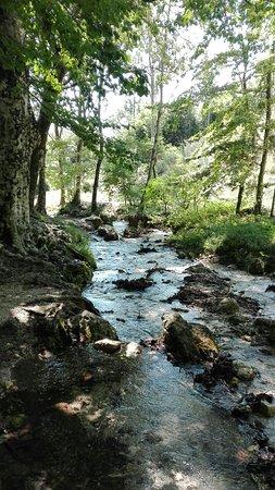 Oasi WWF Monte Polveracchio: IMG_20180809_120233_large.jpg