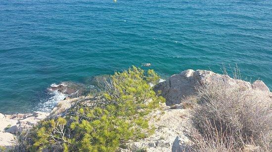 Playa El Torn Naturist Beach: 20180804_175841_large.jpg