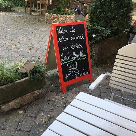 Restaurant Insel Rott Am Rhein Gmbh