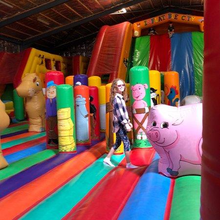 Turoe Pet Farm and Leisure Park: photo5.jpg