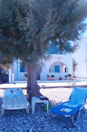 Livadia, Греция: La spiaggia all'ombra della tamerice
