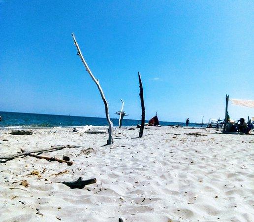 modelli di spiaggia nude