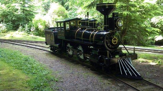 Stanley Park Train