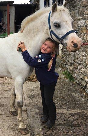 Templecombe, UK: Pony lover