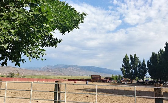 Montañas Wasatch, UT: Paddock for Horses, Cattle
